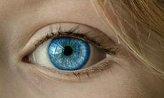 UK Researchers Discover Protein That Might Be Able To Destroy Cancer Cells In The Eyes