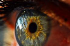 New Glow-In-The-Dark Contacts Could Cure Diabetic Retinopathy