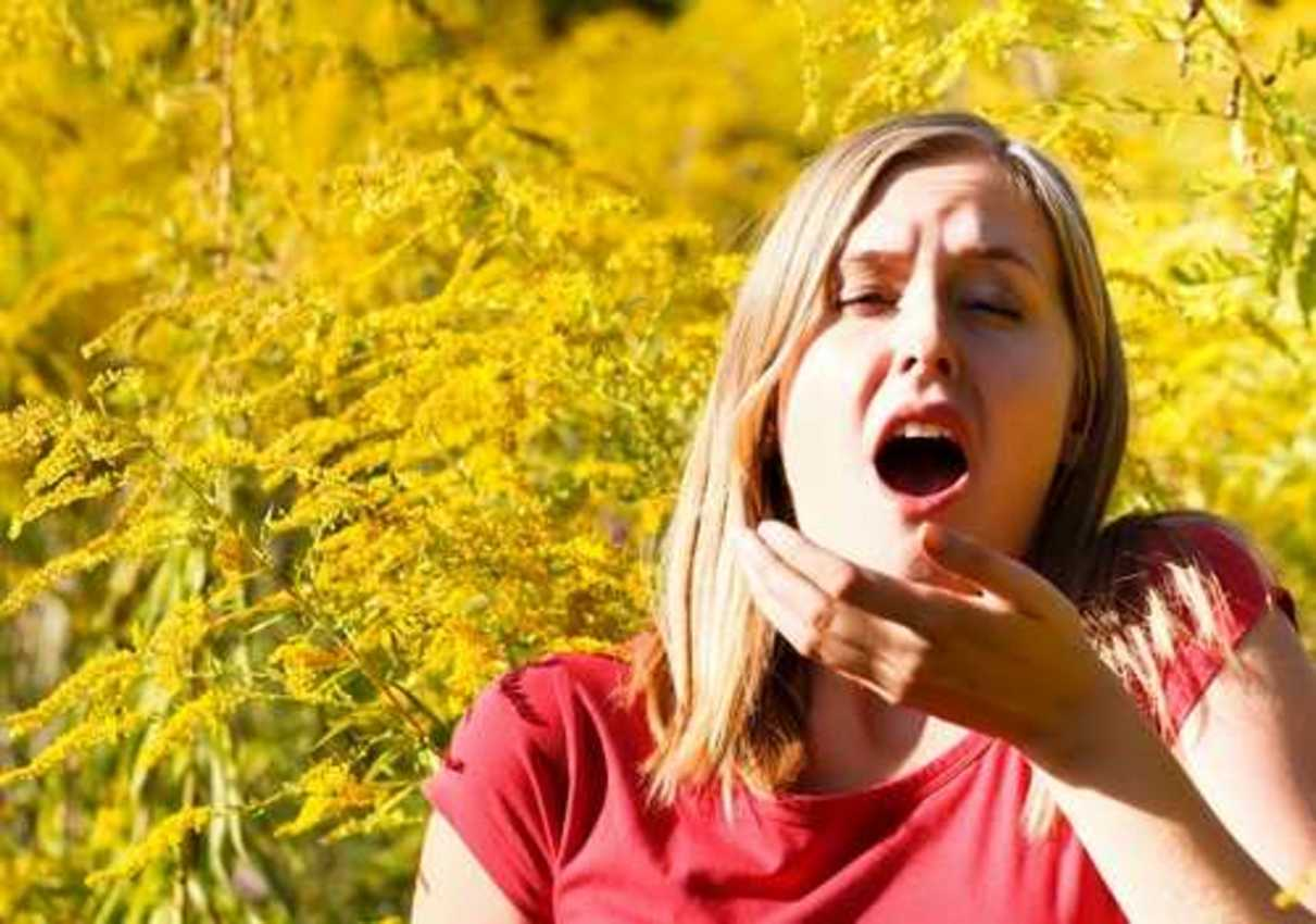 Seasonal Allergic Conjunctivitis (Hay Fever)