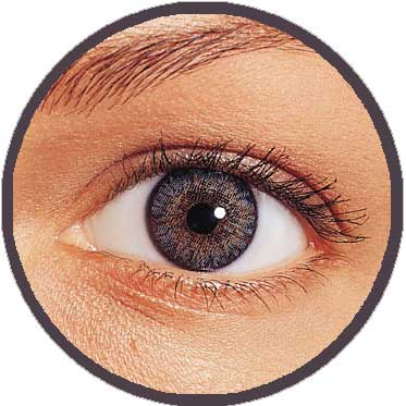 651305f4a38 Freshlook Colorblends Contact lenses direct from the UK at discount ...