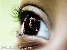 Disposable contact lenses contribute to company sales growth