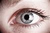 "12% of men ""don""t know partner""s eye colour"""