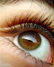 """Contact lens solutions must be """"kept cool"""""""