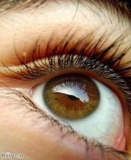 Contact lens ruling prevents sale of cosmetic products